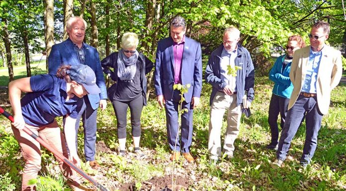 Rosemère opens community gardens for planting enthusiasts