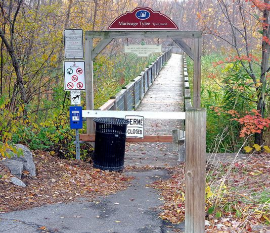 Safety concerns shut Rosemère's Tylee Marsh boardwalk